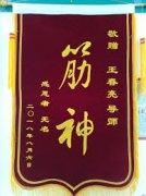 王春亮推拿正骨与按摩心理学高级师传培训班